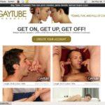 Gay Tube Channels Free Premium Accounts